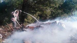 Çöplükte başlayan yangın ormana sıçradı