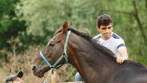 At koşar aşk kazanır