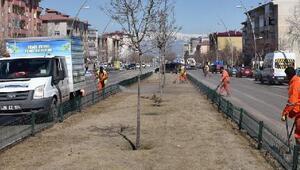 Büyükşehirden bahar temizliği