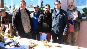 Bergamada mantar sevenleri buluşturan festival