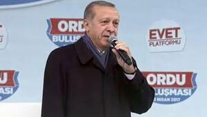 Son dakika... Cumhurbaşkanı Erdoğan: Kimsenin gözünün yaşına bakmayacağız