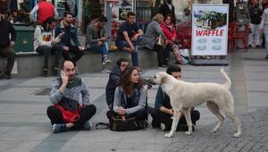 Antalyada referandum protestosu