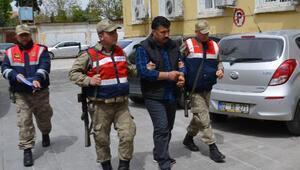 Besnide hayvan hırsızlığına 2 tutuklama