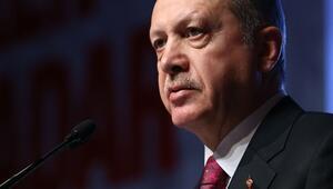 Fransadaki seçimlerde sandıktan Erdoğan çıktı
