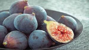 FAO/EBRD desteğiyle siyah incire coğrafi işaret (Cİ) geliyor
