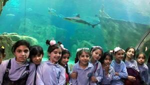 Suriyeli yetim 80 çocuğun Aqua Park Akvaryum sevinci