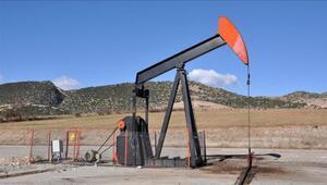 Petrol sondaj kulesi sayısı arttı