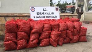 Edirne'de 1.6 ton kaçak midye ele geçirildi