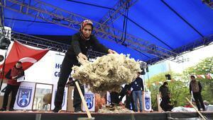 Çoban Fuarı'nda kırkım şampiyonası