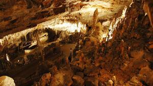 Dünyanın en ilginç canlısına ev sahipliği yapan mağara
