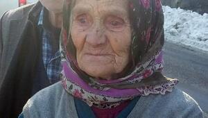 Dağ çileği toplamak için ormana giden kadın kayboldu