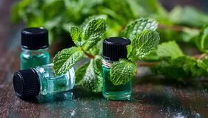 Kimyasallara alternatif 4 doğal güzellik yöntemi
