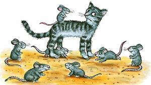 Cihana nam  salmış  kediler