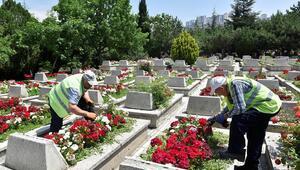 Mezarlıklara trafik düzenlemesi