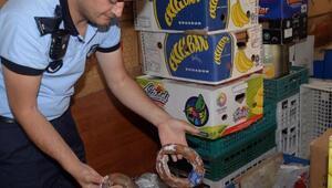 Osmangaziden gıda denetimi