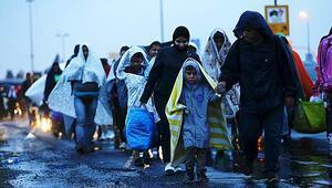 AB, Türkiyeden 5 kat fazla mülteci aldı