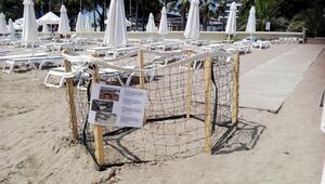 Konyaaltı plajından sonra bu kez Sidede ortaya çıktı: 4 dilde uyarı