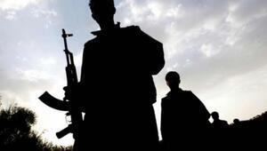 Gri listedeki PKKlı Mehmet Doğan öldürüldü