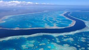Büyük Set Resifi tehlike altındaki Dünya Miraslarına dahil edilmedi