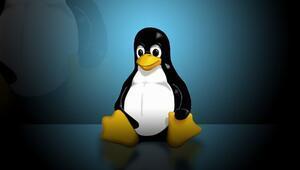 Linuxta korkutan güvenlik açığı
