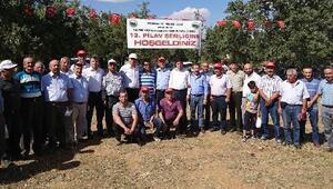 İmirli Köyünde 13. Pilav Şenliği