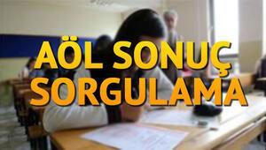 AÖL sonuçları açıklandı MEB 1-2 Temmuz AÖL sınav sonuçları