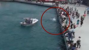 Kadıköyde denize düşen kadını vatandaşlar böyle kurtardı