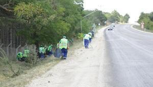 Odunpazarında yol kenarı temizliği
