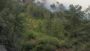 Hatayda 5 hektar orman yandı