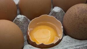 Zehirli yumurta skandalı İngiltere ve Fransaya sıçradı