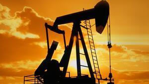 Ham petrol fiyatları iki yılın zirvesinde