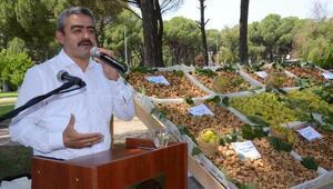Nazillide sezonun ilk kuru inciri 200 TLden satıldı