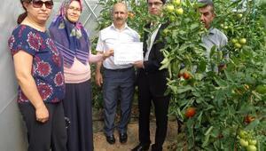 Çankırıda Genç Çiftçi projesi meyvesini verdi