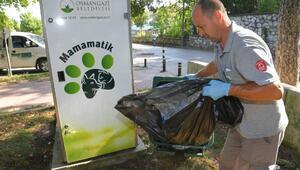 Sokak hayvanları doydu, çevre temiz kaldı