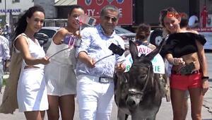 Bodrum sokaklarında eşekli, türkü tanıtımına hayvanseverlerden tepki