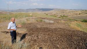 Mahalledeki tavuk üretme çiftliğine çevre kirliliği tepkisi