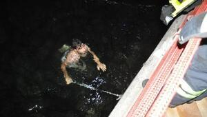 Kediyi kurtarmak için denize atladı