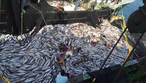 Son dakika haberi: Türk balıkçıları 2 tekneyle gitti, 33 teknelik filo kurdu