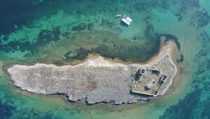 Ayvalık adalarında ilginç bulgular ortaya çıktı