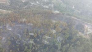 Amanoslarda 7 hektarlık orman yandı