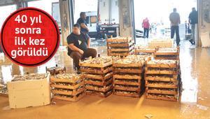 Balıkçılar: Yeme-içme, yatma bizden 4 bin liraya eleman bulamıyoruz
