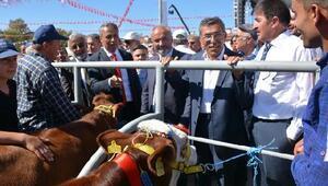 Çerkeş 13ncü Kültür Hayvancılık ve Bal Festivali yapıldı