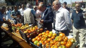 Bünyanda domates festivali yapıldı
