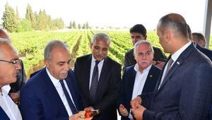 Bakan Fakıbaba: Kuru üzüm 4 liranın altına düşmeyecek