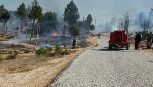 Bahçedeki yangın ormana sıçradı: 10 evde hasar oluştu