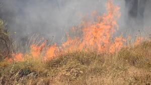 Sinopta örtü yangını güçlükle söndürüldü