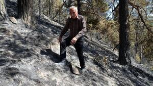Sarıkamıştaki örtü yangını söndürüldü