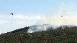 Hataydaki orman yangını 11 gün sonra söndü