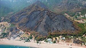 Antalyada 226 orman yangınında 2 bin hektar zarar gördü