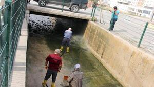 Taşkın koruma kanalında temizlik